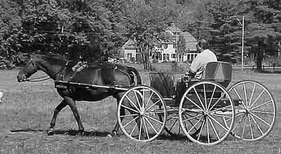 2002 Old Horse Carriage