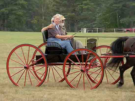 Carriage driving club member in antique buggy, Newbury, NH