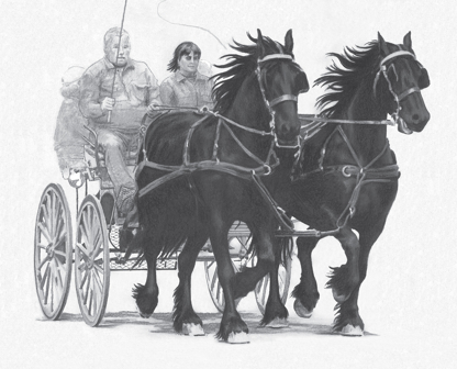 Friesian horses drawing by Frake Fine Art