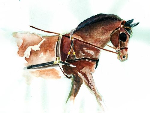Horse Art Heather Roche
