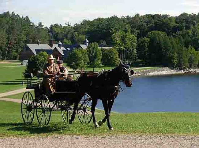 Carriage horse coaching Coach Barn Shelburne Farms